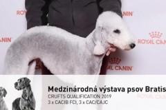 Jezinka-Bratislava-